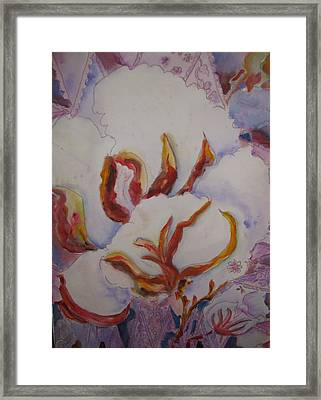 High Cotton Framed Print by Linda Rupard