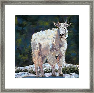 High Country Friend Framed Print by Mary Benke