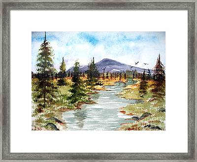 High Country Stream Framed Print