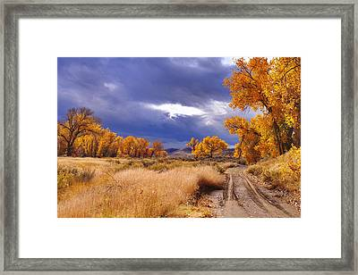High Desert Autumn II Framed Print by SB Sullivan