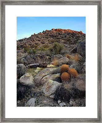 High Desert Garden Framed Print