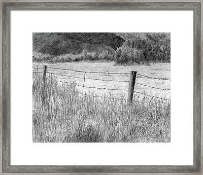 High Desert Hay Field Framed Print