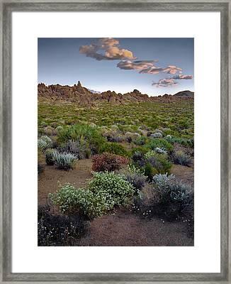 High Desert Hues Framed Print