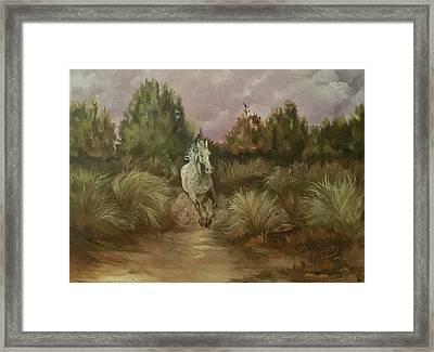 High Desert Runner Framed Print