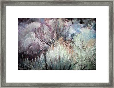 High Desert Seduction Framed Print by Anita Stoll