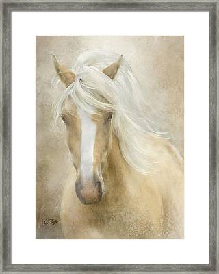 Spun Sugar Framed Print