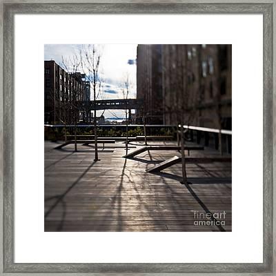 High Line Park Framed Print by Eddy Joaquim