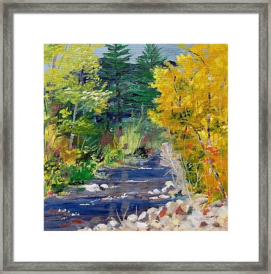 High Mountain Creek  Framed Print