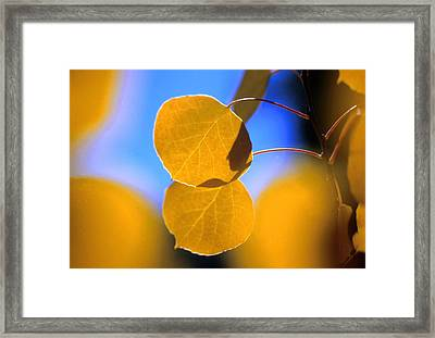 High Mountain Glory Framed Print by Jerry McElroy