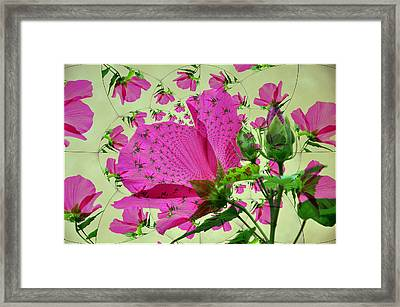 High Tea With Pink Hibiscus Framed Print