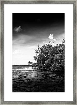 High Tide Framed Print by Marvin Spates