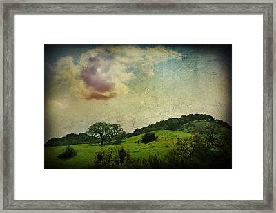Higher Love Framed Print