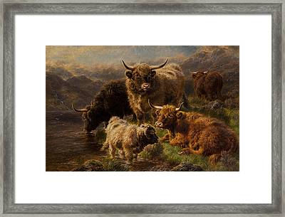 Highland Cattle Framed Print by William Watson