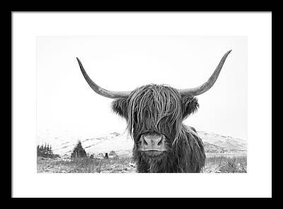 Scotland Framed Prints