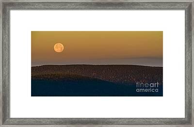 Highland Stawberry Moon  Framed Print by Thomas R Fletcher