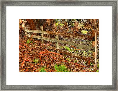 Highway 1 No Parking Framed Print by Adam Jewell