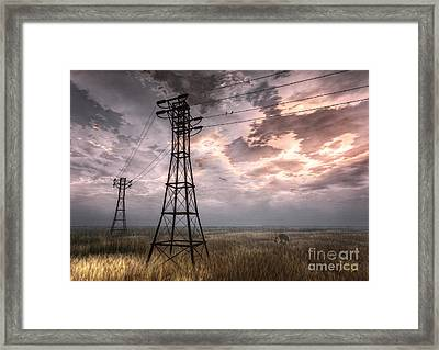 Highwire Framed Print by Alina Davis