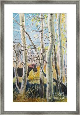 Hiiden In The Aspens  Framed Print by Jeanette Skeem