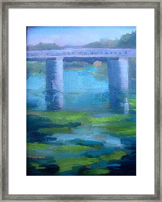 Hike To The Trestles   San Clemente California Framed Print by Bryan Alexander