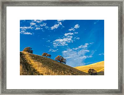 Hiking East Bay Hills Framed Print