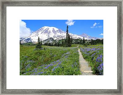 Hiking In The Wildflowers Framed Print by Lynn Hopwood