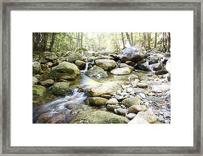 Hiking Near The Trail Framed Print