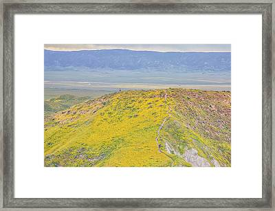 Framed Print featuring the photograph Hiking The Temblor by Marc Crumpler
