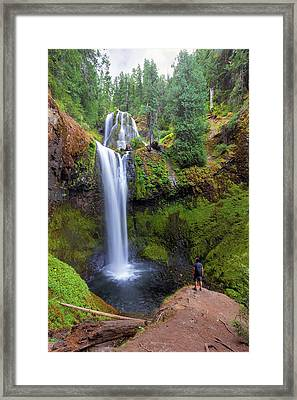 Hiking To Falls Creek Falls Framed Print by David Gn
