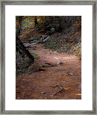 Hiking Trail To Abrams Falls Framed Print by DigiArt Diaries by Vicky B Fuller