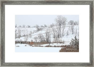 Hiking Trail With People And Dogs Framed Print by Charline Xia