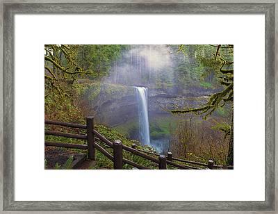 Hiking Trails At Silver Falls State Park Framed Print