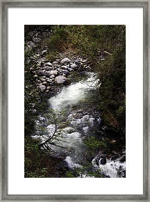 Hiking Wallace Falls#1 Framed Print