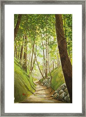 Hiling Path Framed Print by Charles Hetenyi
