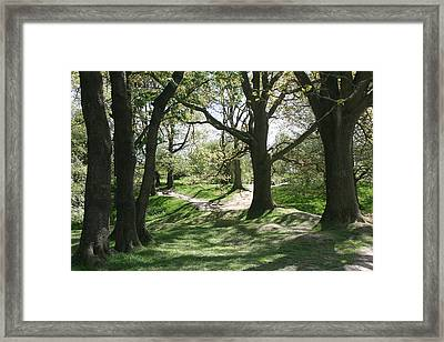 Hill 60 Cratered Landscape Framed Print