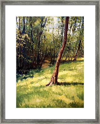 Hill Acres Framed Print by Laura Ury