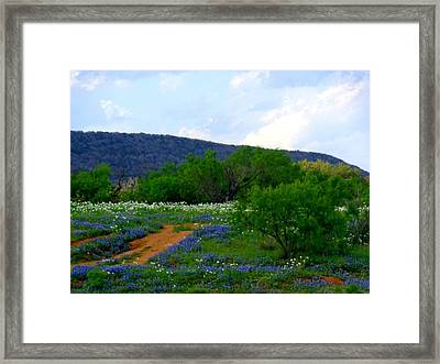 Hill Country Colors Of Spring Framed Print