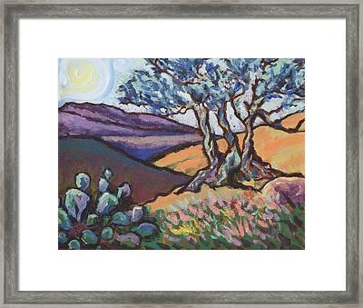 Hill Country Dusk Framed Print