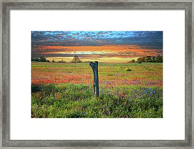 Hill Country Heaven Framed Print by Lynn Bauer