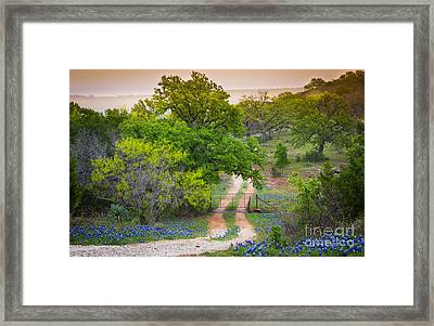 Hill Country Twilight Framed Print by Inge Johnsson