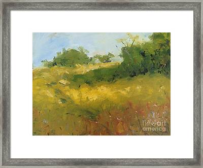 Hill In Richmond Framed Print