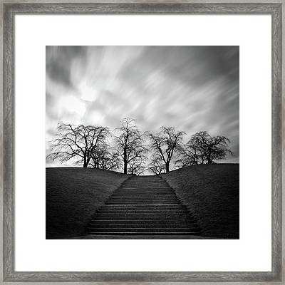 Hill, Stairs And Trees Framed Print by Peter Levi