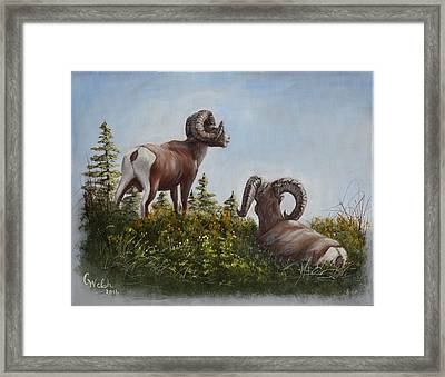 Hill Top View Framed Print