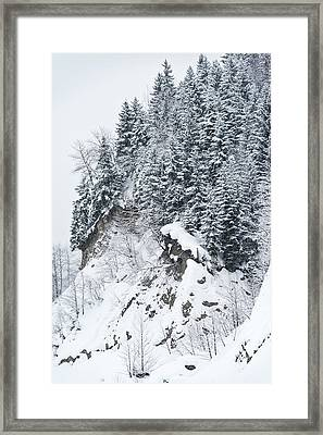Hill Trees Framed Print by Svetlana Sewell