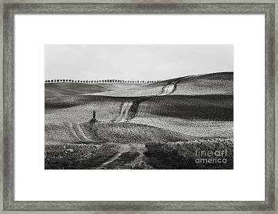 Hills From Val D'orcia, Tuscany Framed Print by Luigi Morbidelli