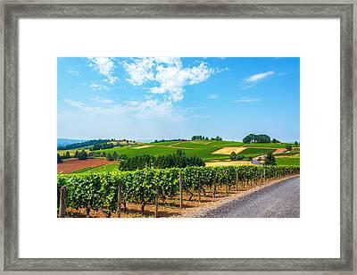 Hills Of Vineyards Framed Print by Jess Kraft