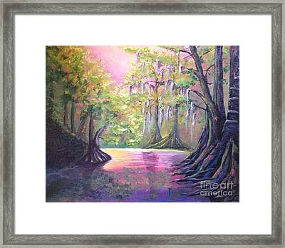 Withlacoochee River Nobleton Florida Framed Print
