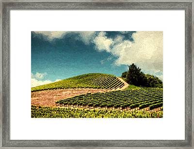 Hillside Curves Framed Print by John K Woodruff