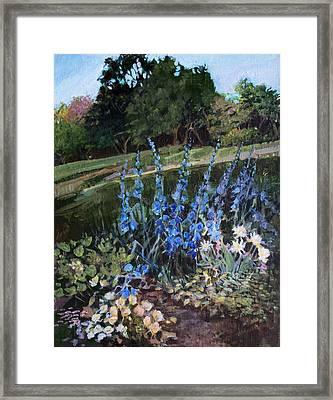 Hillside Garden Framed Print by Diane Ursin