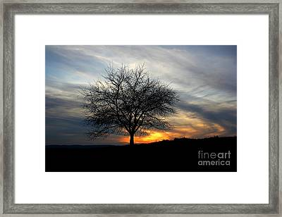 Hillside Morning Framed Print