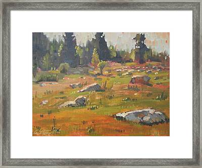 Hillside Patterns Framed Print by Len Stomski
